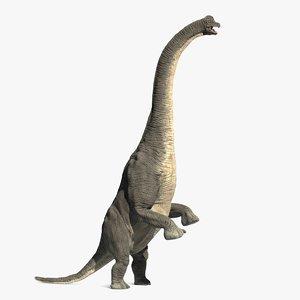 dinosaur model
