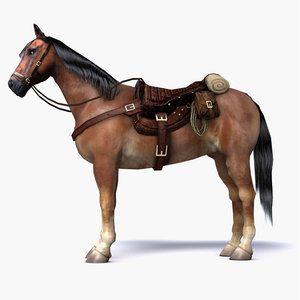 brown horse saddle 3D model