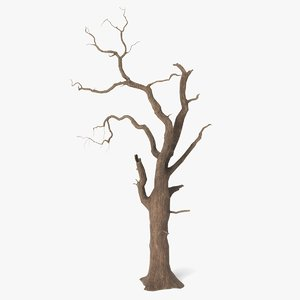 spooky tree model