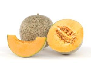 3D cantaloupe melon fruit model