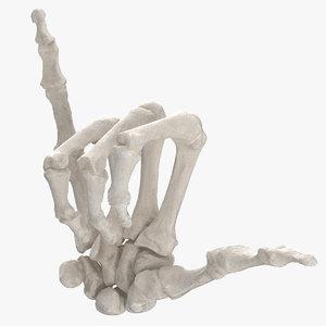 3D real human hand bones