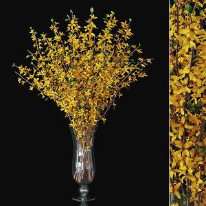 forsythia branches vase model