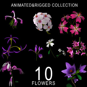flowers animation 3D model