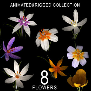 8 flowers animation 3D