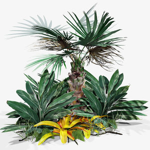 3D model set tropical plants sticks
