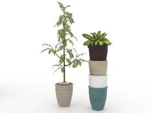 ornamental plants pots 3D