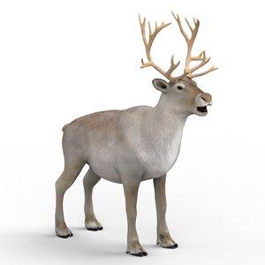 reindeer materials pbr 3D model