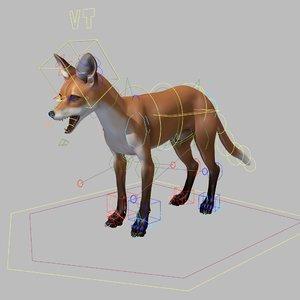 3D model fox rigged