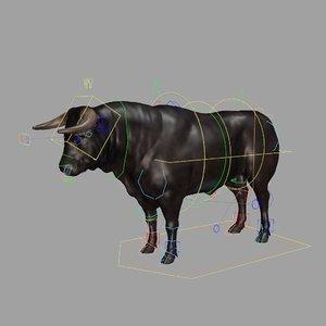 galician bull model