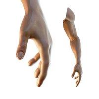 dark skin hand anatomy man