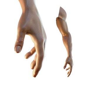 3D dark skin hand anatomy model