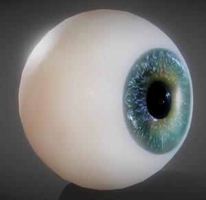 3D eye anatomy eyeball
