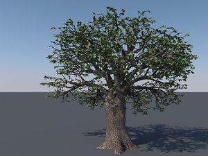 3D tree modeled