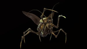 3D character land bug