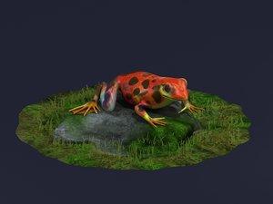 jungle frogs poison dart 3D model