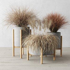 dried sedge concrete pots 3D model