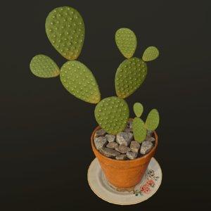 cactus ready pbr - 3D model