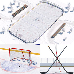 hockey court model