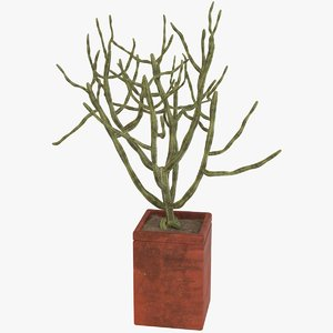 3D decorative potted