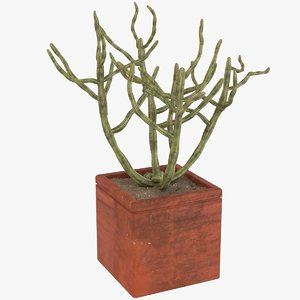 decorative potted model