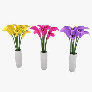 flowers calla model