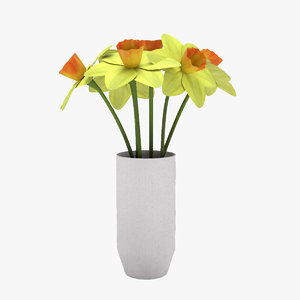 3D daffodil flowers model