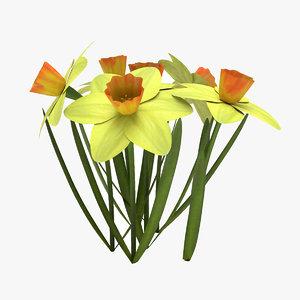 daffodil flower 3D model