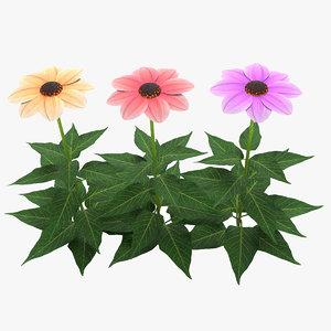 3D flower dahlia happy