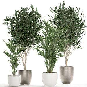 plants interior pots model