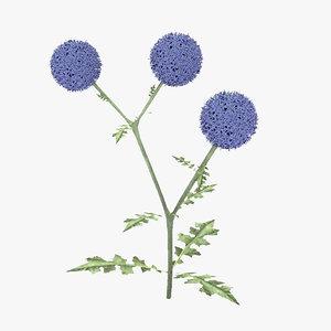 plant flowers 3D