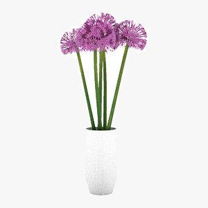 allium globemaster flower model