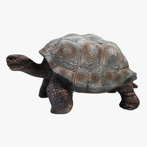 3D model tortoise turtle reptile