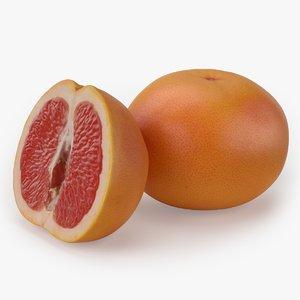 3D grapefruit realistic