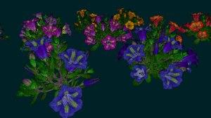 3D model flower gentiana acaulis