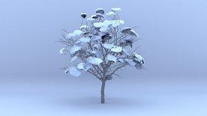 cercis winter hight 3D model
