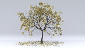 3D plum autumn hight