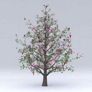 magnolia flowers hight model