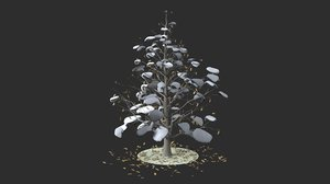 3D magnolia winter hight model