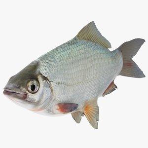 fish river 3D