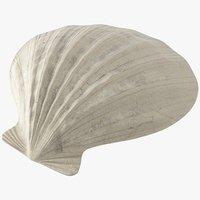 Seashell V2