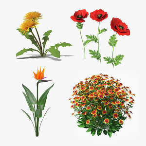 3D flowering plants 2