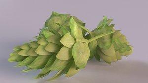 hops beer plant flower 3D