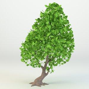 cartoon tree model