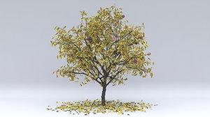 peach autumn hight 3D model