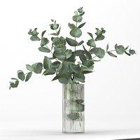 Bouquet of eucalyptus branches