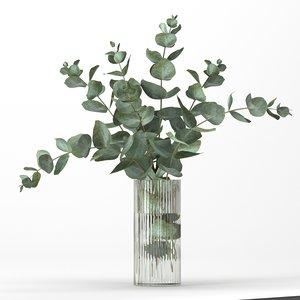 bouquet eucalyptus branches 3D