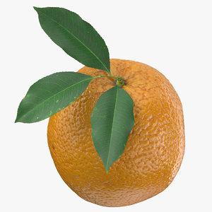 3D model orange 06 leaves