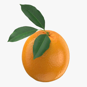 3D orange leaf