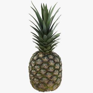 pineapple 01 3D model