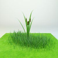 Cattail Low-poly 3D model